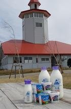a.澤西奶牛乳製品