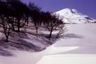 Mt.Chokai 2